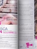 cavallin-press2013-ppocket-02